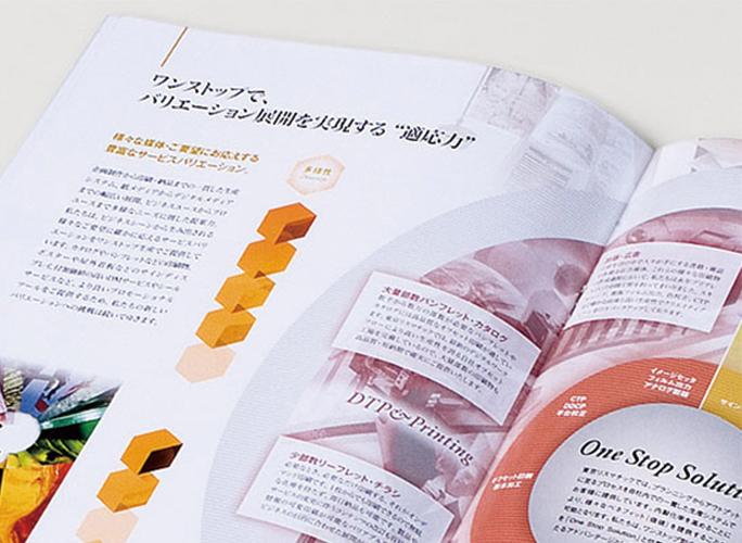 pamphlet_b.jpg